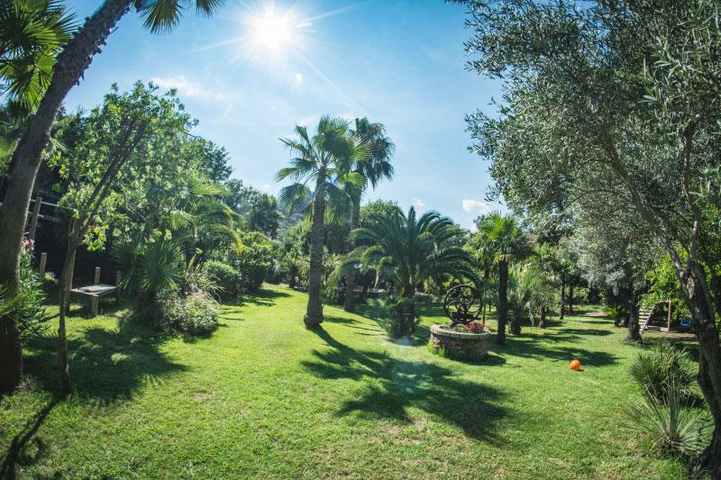 Tropicana-Flore-jardins