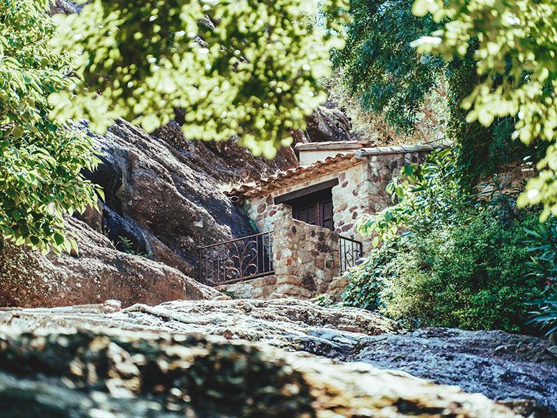 Histoire-vieilles-pierres-tropicana-flore